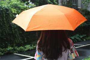 oppoing Creative Portable Kids Gifts Cartoon Carrot Shaped Umbrella Folding Rain Umbrella - intl