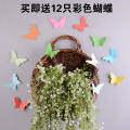 Dengan Dekorasi Dinding Dinding Dekorasi Stereo Indah Dinding Menghias Dinding Gantungan Dinding dan Gantungan Dinding, keranjang Anyaman Pemilu dengan Panjang Ungu Kim Jong-un Yoo Disajikan 12-Butterfly-Intl 1