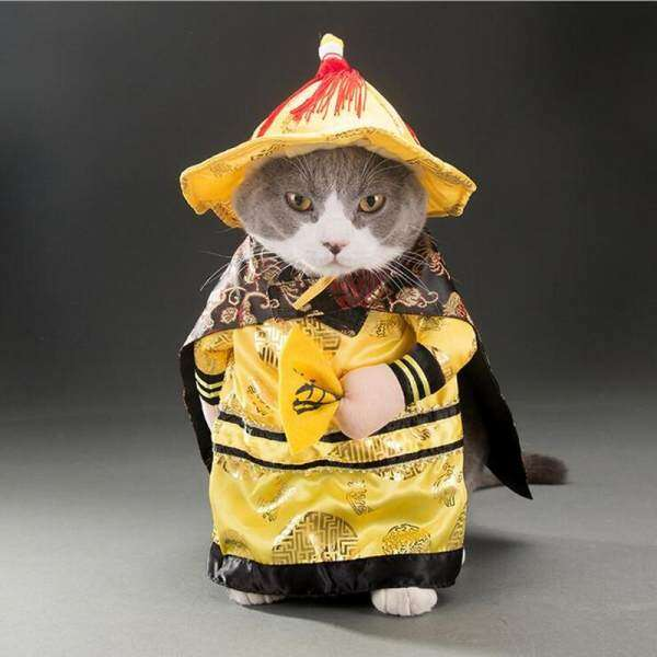 dog cats halloween costume emperor cosplay funny pet dress up party clothes m malaysia