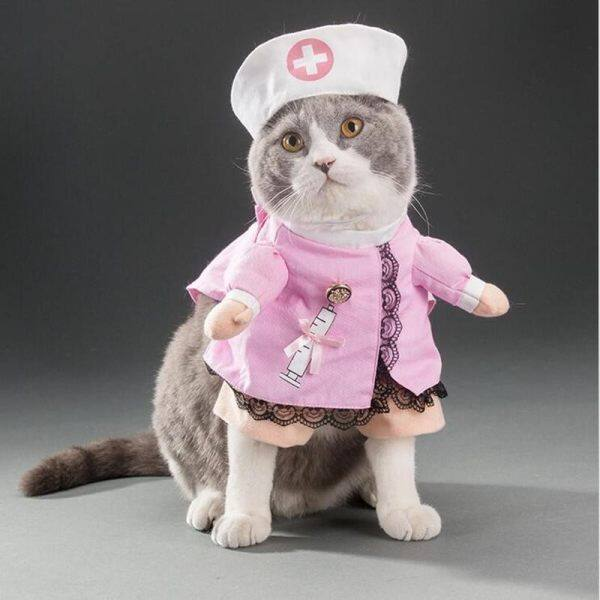 pet dog cat halloween costume funny cute dress up suit christmas party clothes nurse xl malaysia