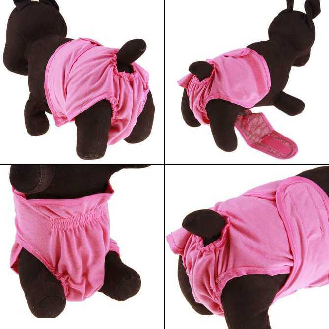 ... B-F Comfortable Pet Dog Panties Strap Sanitary Underwear Diapers Physiological Pants ( L ) - intl ...