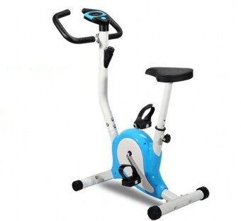 Stationary Exercise Bicycle (Blue)
