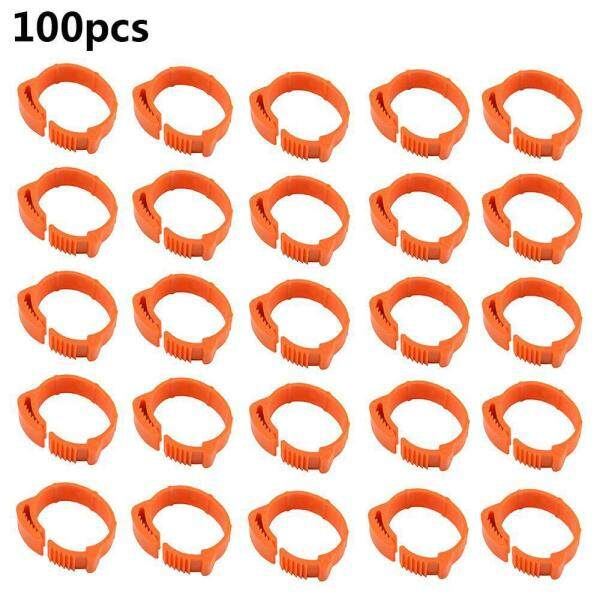 LightSmile 100 Cái Đường Kính Trong 20 ~ 24 Mét Nhựa Mở Loại Khóa Gà Vịt Ngỗng 3 Màu Kỹ Thuật Số Foot Ring Gia Cầm Farming Thiết Bị