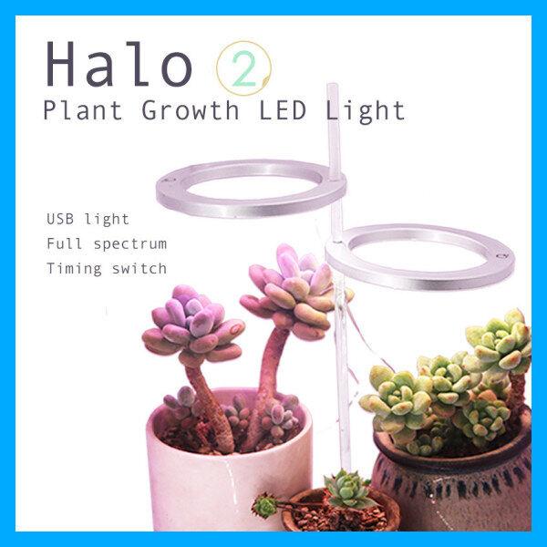 Indoor Plant Growth LED Light 多肉室内植物生长灯