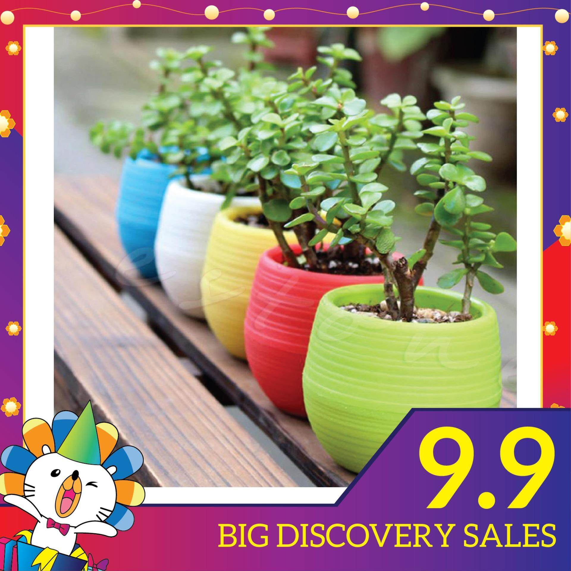 Colourful Mini Plastic Flower Pot Succulent Plant Flowerpot Home Office Decor