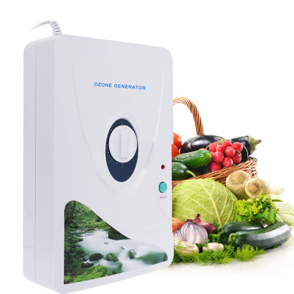 Smart Sensor 600mg/h O-zone Generator Ozonator O3 Timer Air Purifiers Purify Oil Vegetable Meat Air Water