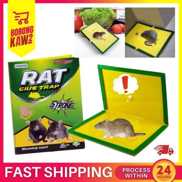 1PCS HX-6008 Mouse Catcher Trap Super Glue Rat Bugs Safe Trapper Rat Glue Board