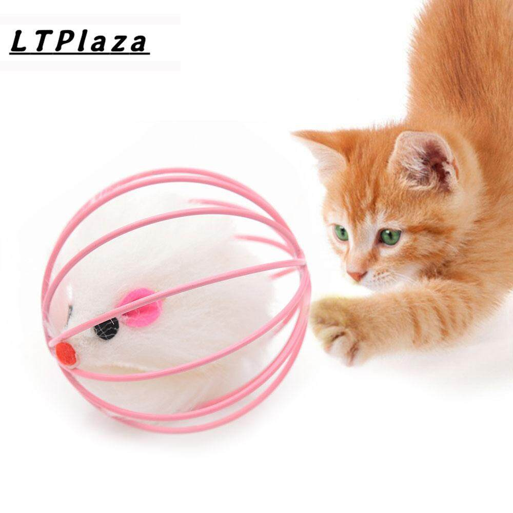 The Interactive Toy For Cats, 1cat Toys / Accessories To Play With The Cat (color Random) By Ltplaza.