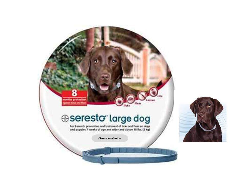 Seresto® Flea &tick Collar For Large Dog Over 8 Kg ( Free Gift -Limited) By Genice In A Bottle.