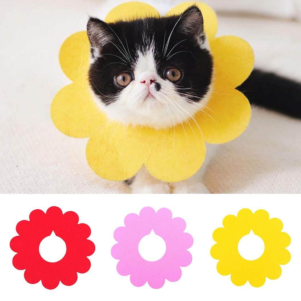 Thú Cưng Phục Hồi Cổ Dễ Thương Hình Hoa Cát Phục Hồi Cổ Nơ Đeo Cổ cho Mèo Con 20