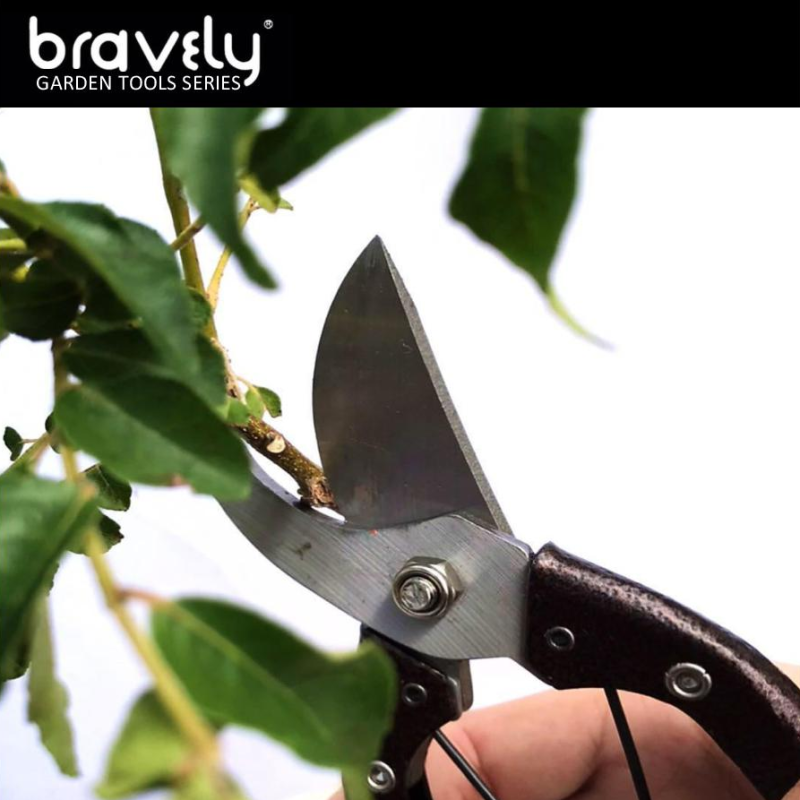 BRAVELY JAPANESE STYLE CURVED TIP PRUNING SHEAR (TGS-04)