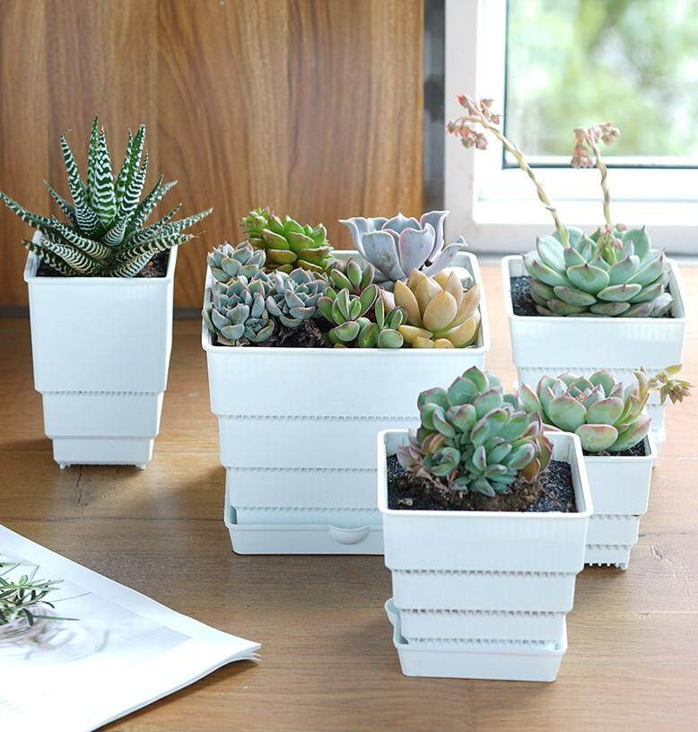 Set of 3 Succulent Mesh Pot Cactus MeshPot 7cm Square Succulent Pots Flower Planter Cactus Pot Plastic Square Pot With Holes Excellent Drainage, Good Air Movement, Prevent Root Rot