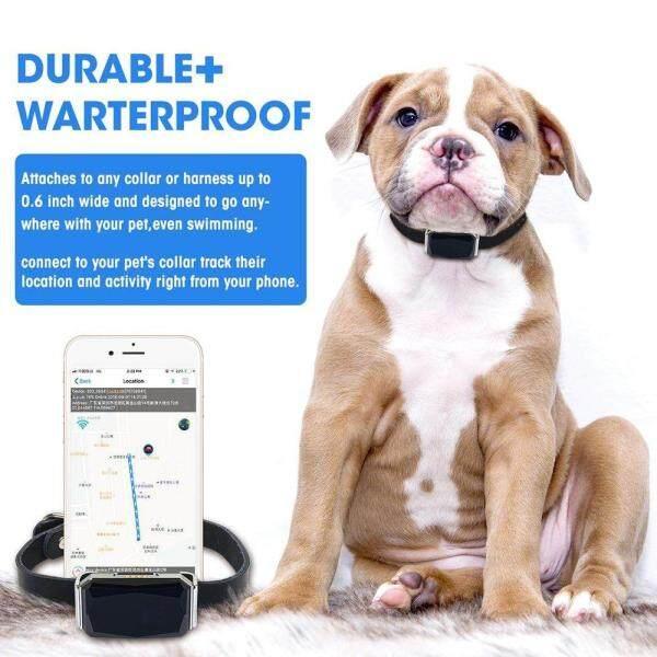 Mini Pet GPS Tracker thực tế chống mất IP67 không thấm nước theo dõi động vật cổ áo cho Puppy Dog Cat gia súc cừu dropshipping
