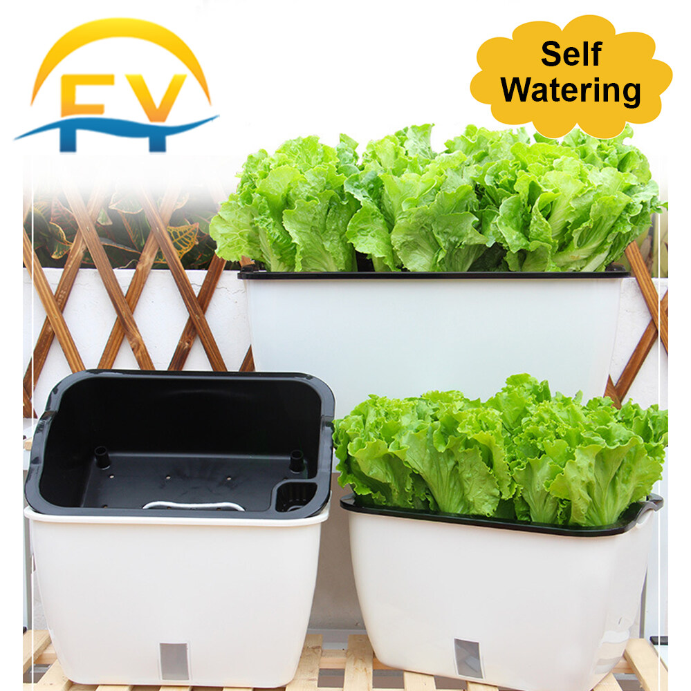 FY Self Watering Absorb Vege Pot Lazy Pot Home Vegetable Planting