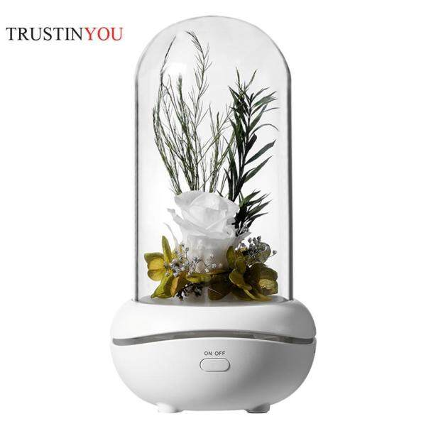 [trustinyou]7 Color LED Essential Oil Aroma Diffuser Immortal Rose Aromatherapy Lamp Singapore