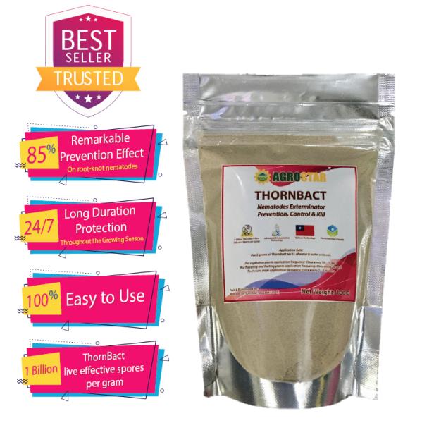 THORNBACT ( AGROSTAR ) - Nematodes Exterminator - Organic 1 Billion ThornBact Live Effective Spores per gram to Prevention, Control & Kill Nematodes in your garden soil and protect your beloved plants 100 Gram Packet