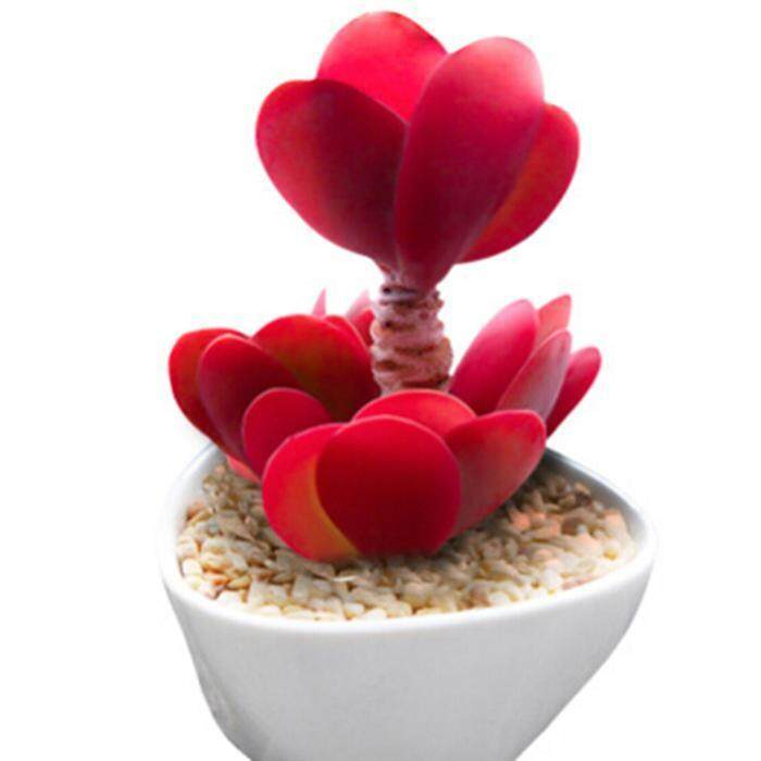 Fake Flowers And Plants For Sale Artificial Flowers And Plants