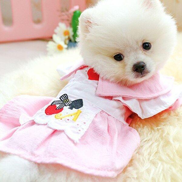 Mèo Dễ Thương Công Chúa Váy Mùa Hè Quần Áo Thú Cưng Chó Nhỏ Tiệc Sinh Nhật Bật Cổ Tutu Váy Cho Yorkies Chihuahua Puppy Cat
