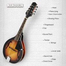 F-Style Mandolin Sunburst 8-String Basswood with Rosewood Adjustable Bridge USA