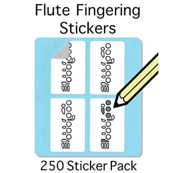 ขลุ่ยนิ้วชุดสติกเกอร์ (250 แพ็ค) ที่มีประโยชน์สำหรับนักเรียนและครู! - นานาชาติ.