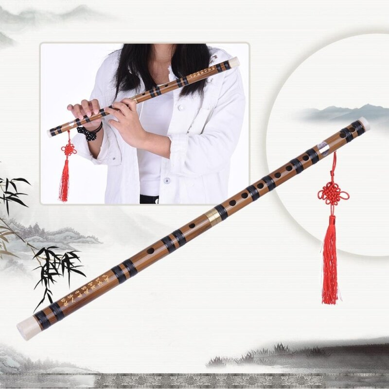 Pluggable Handmade Bitter Bamboo Flute/Dizi Traditional Chinese Musical Woodwind Instrument in E Key for Beginner Study Level Outdoorfree Malaysia