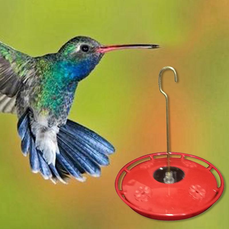 Bình Nước Hoa Hummingbird