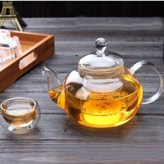 Heat Resistant Clear Glass Teapot With Infuser Flower/green/black Tea Pot 600ml Without Cups By Freebang.