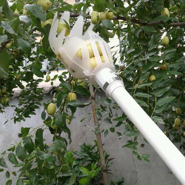 L-Sweet Fruit Picker Head Plastic Fruit Collection Tools Fruit Catcher Apple Citrus Pear Picking