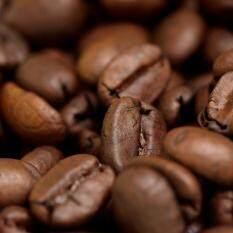 Eciatto Executive Coffee Bean: .