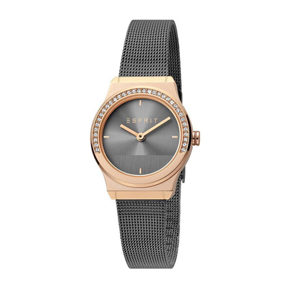 Esprit Magnolia Mini 28mm Mini Stones Steel Women Watch Malaysia