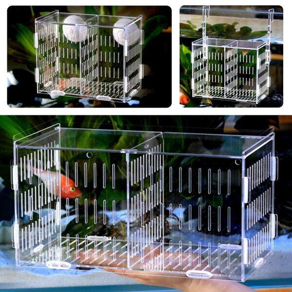 Bể Cá Acrylic Trong Suốt Betta Bể Cá Giống Ấp Trứng # Sucker Fix