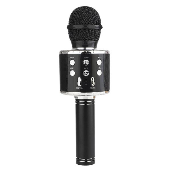 Micro BT Di Động Chuyên Nghiệp Loa Âm Nhạc Máy Nghe Nhạc Cầm Tay Microphone Ca Hát Ghi Mic