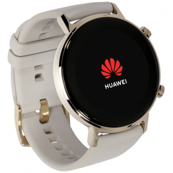 Huawei Watch GT ELA-B19 [Refined Stainless Steel - 42mm] Original Huawei Malaysia