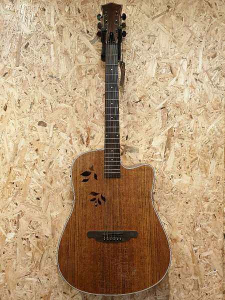 Sqoe SQ-i 40  inch acoustic guitar with fishman EQ Malaysia