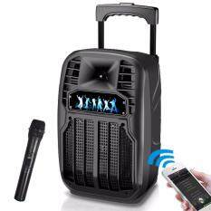 8 Inch Luggage Style Outdoor plaza Portable PA DJ Sound System Trolley  Speaker with Wireless Microphone, USB/3 5mm Jack Audio Input Telescoping  Handle