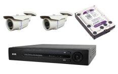 Adv7008ahd 8ch Ahd Hd Megapixel Dvr + 1tb Wd Purple Cctv Hdd + 2 X 1.3megapixel Ahd Outdoor Ir Bullet Camera By One Stop Solution.