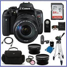 Canon EOS Rebel T6i DSLR Camera with EF-S 18-135mm f/3.5-5.6 IS STM Lens (USA) + 64GB SDXC Class 10 Memory Card + 59