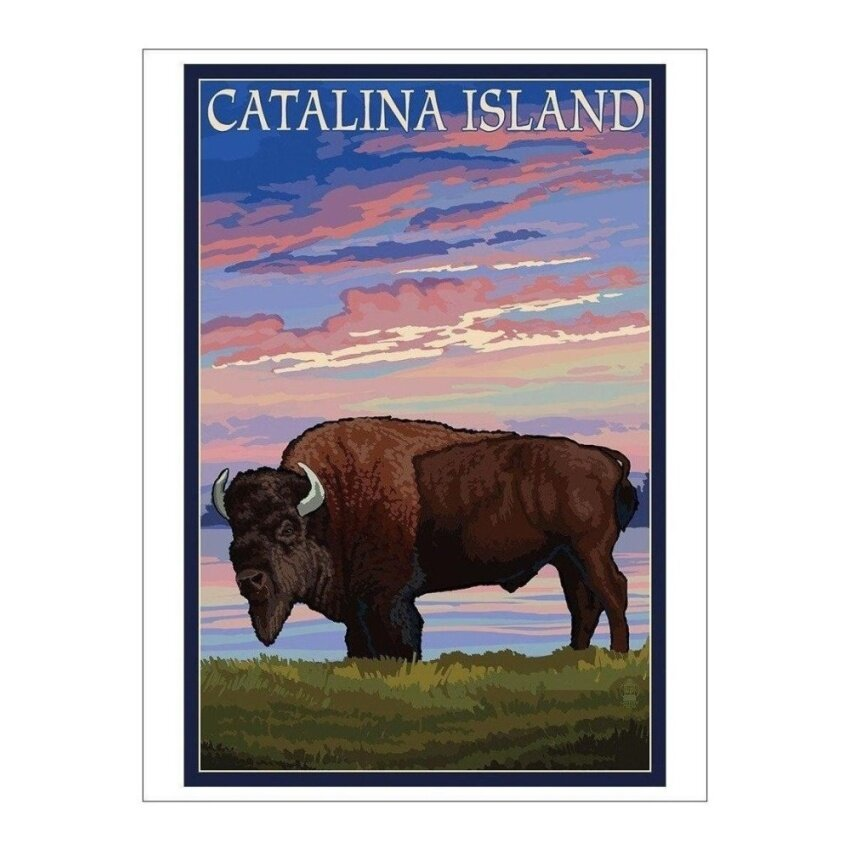 Catalina Island. California - Bison and Sunset (Playing Card Deck -52 Card Poker Size with Jokers) - intl