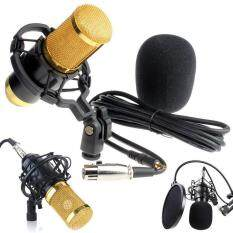 Condenser Pro Audio BM800 Microphone Sound Studio Dynamic Mic +Shock Mount Malaysia