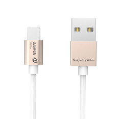 Practical WSKEN 2 in 1 Micro USB Lightning Charger Braided Cable For iPhone & Samsung Gold
