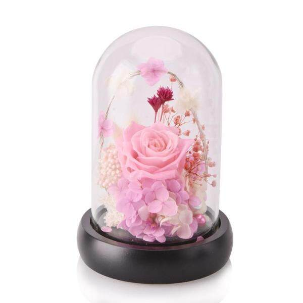 WR Pink Eternal Flower Led Light Eternal Rose Flower with Base Preserved Beauty Real Natural Fresh Red Roses Flowers Gifts