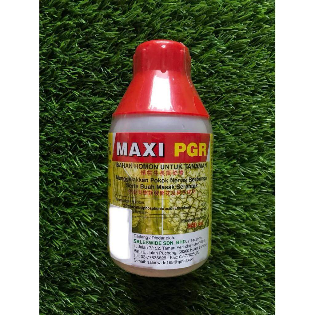 Maxi PGR Ethephon 10.8% Hormon Nanas