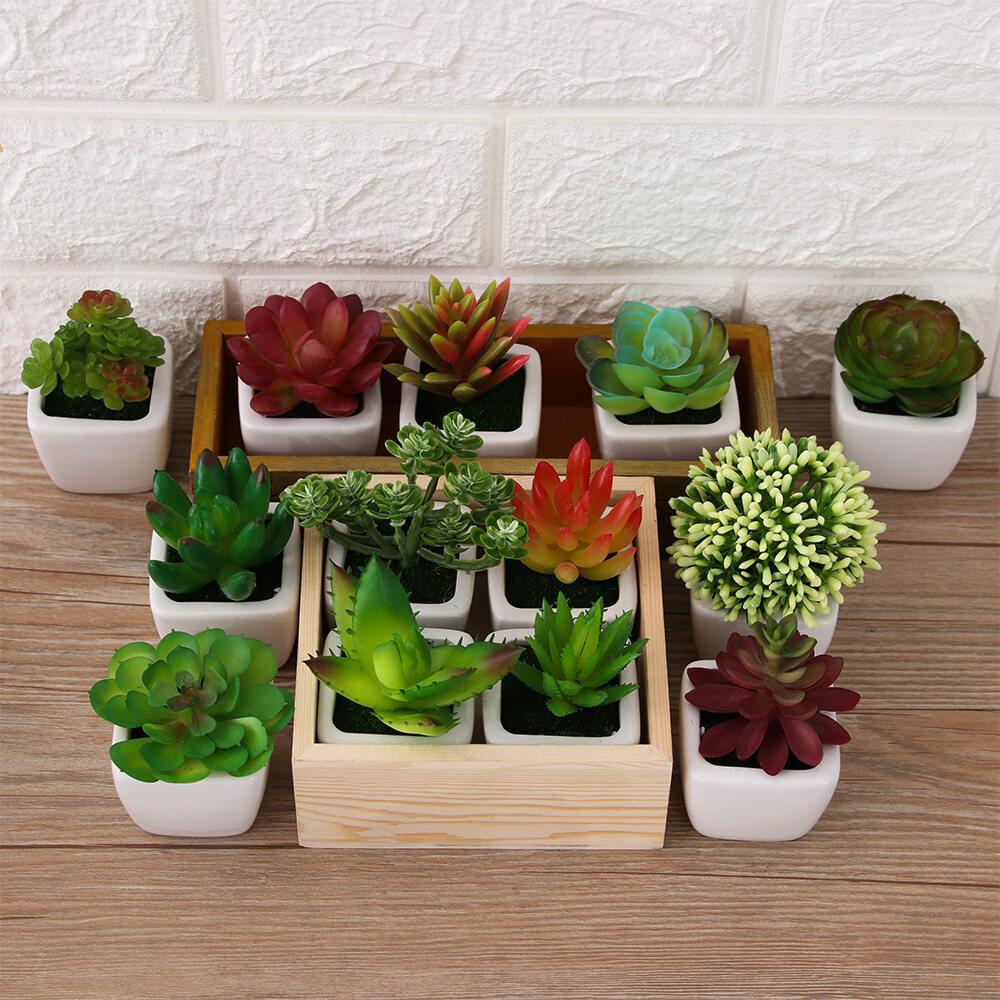 Decoration Home Decor Artificial Plants Fake Cactus Succulents Floral Craft