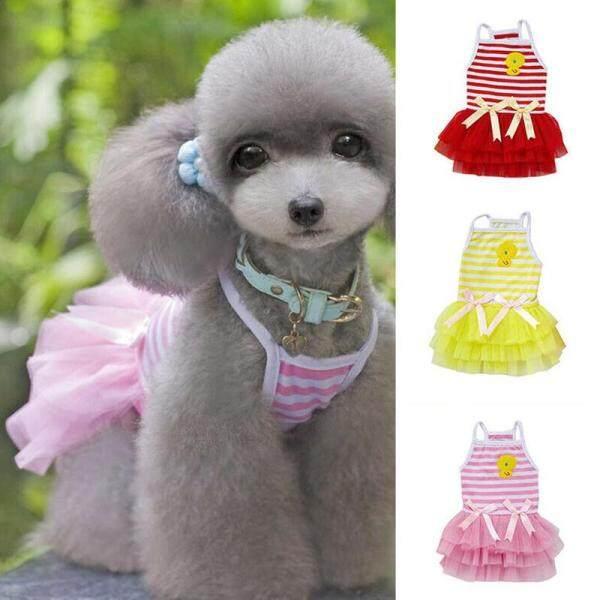 Váy Công Chúa Cho Chó Chihuahua, Trang Phục Ấm Áp Phù Hợp Cho Thú Cưng