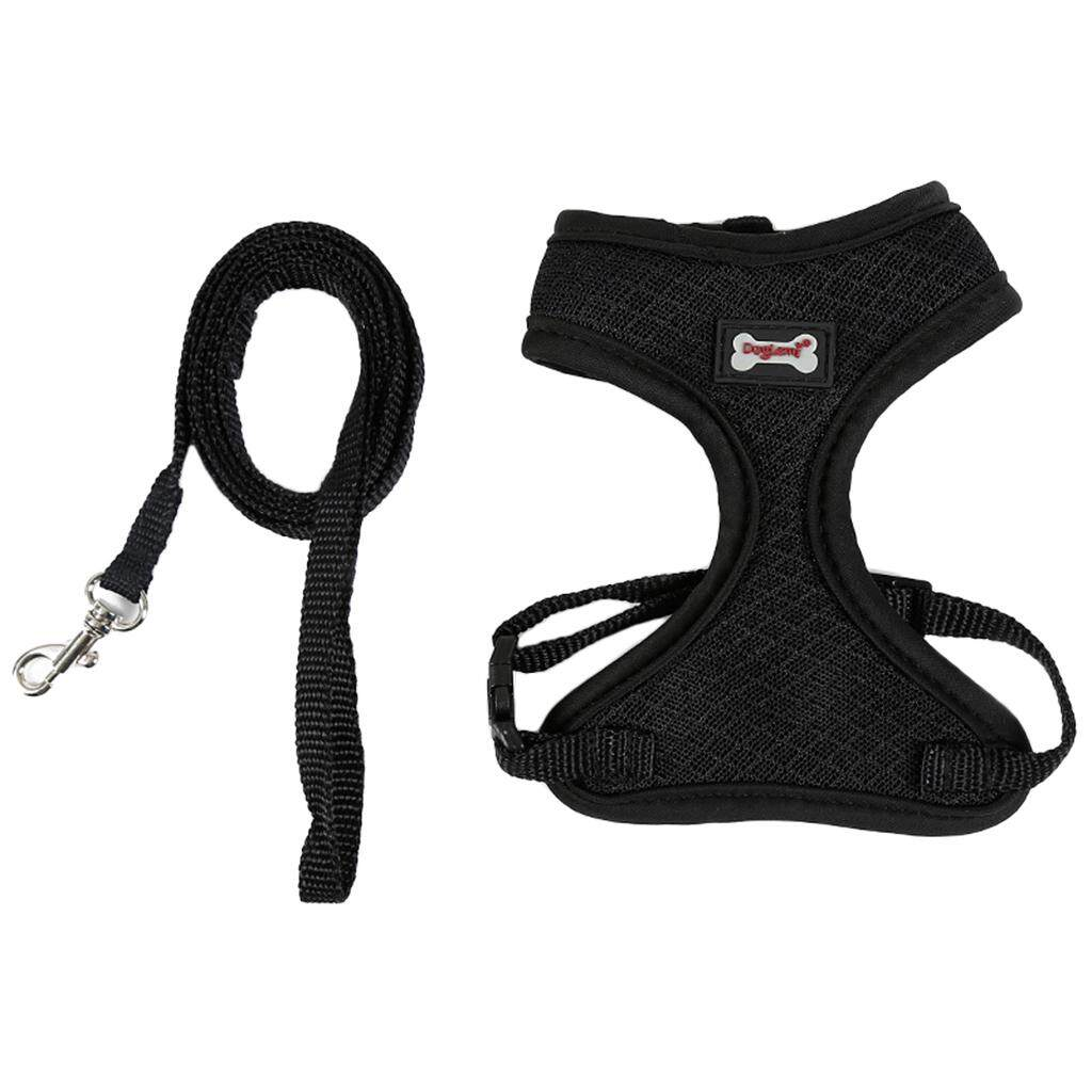 Leashes & Collars - Buy Leashes & Collars at Best Price in Singapore