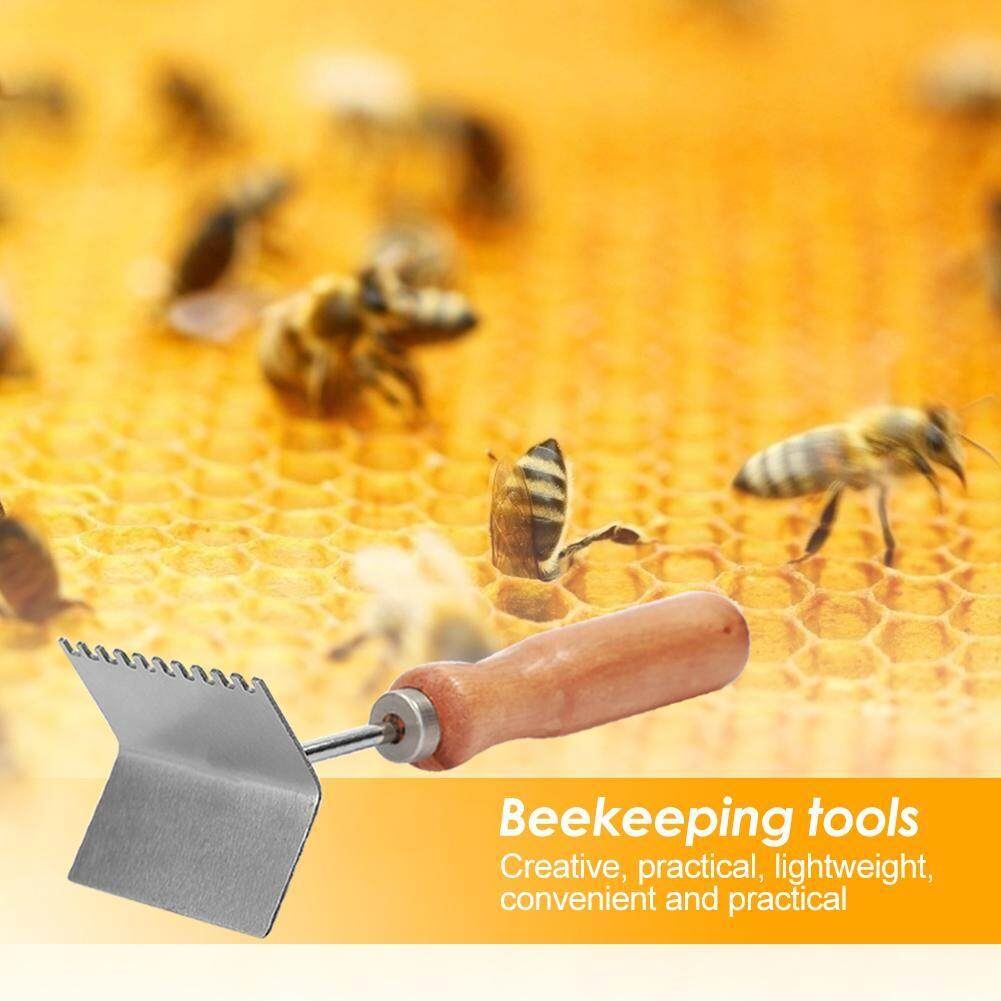 Forwardlife Beekeeping Cleaning Shovel Handy Lightweight Equipment Beekeeping Supplies
