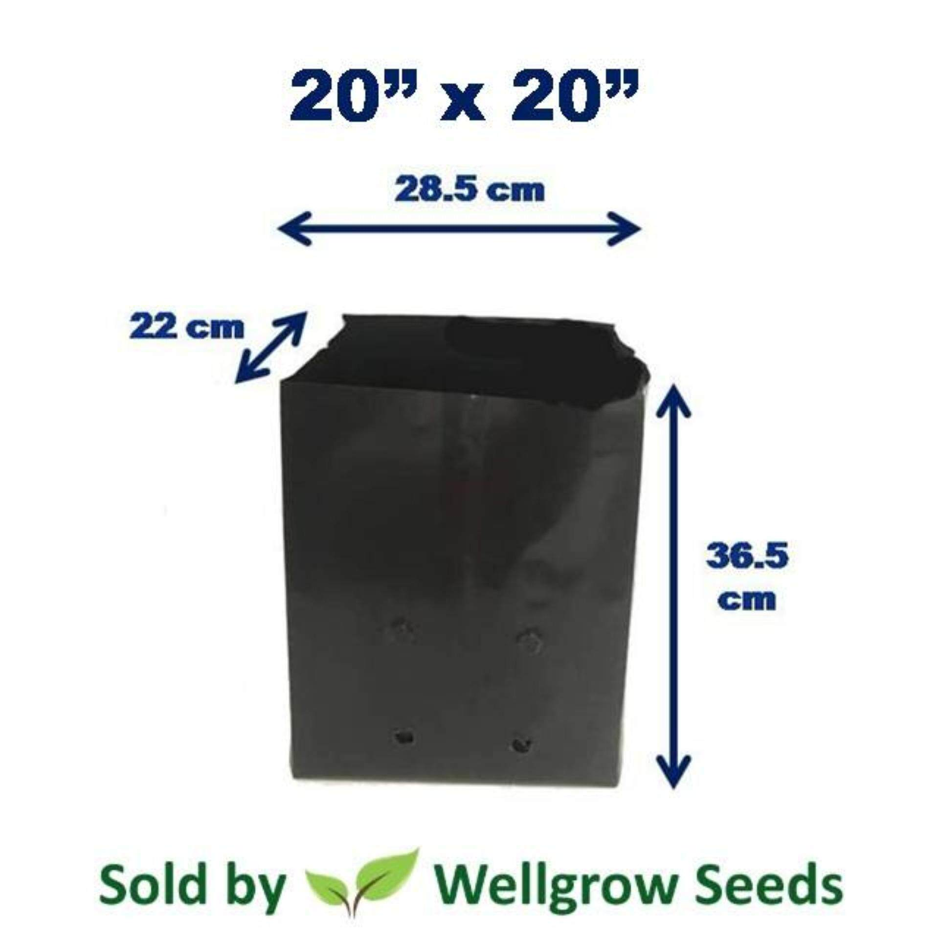 Polybag 20 x 20 (1kg) ≈8 pcs (Nursery Growing Bag Thick UV)