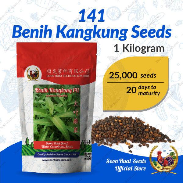 Soon Huat 141 Benih Kangkung Seeds 顺发蕹菜種子
