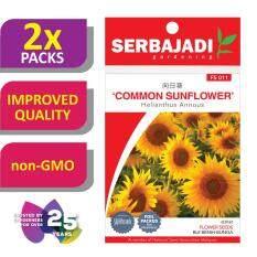 [2 Packs] Serbajadi Seeds Common Sunflower FS011