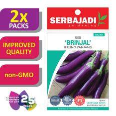 [2 Packs] Serbajadi Seeds F1 Hybrid Brinjal - Terung Panjang ( BBS001 ) (+/- 100 Seeds)